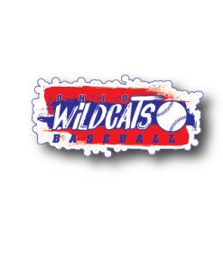 Wildcats Spirit Wear #5