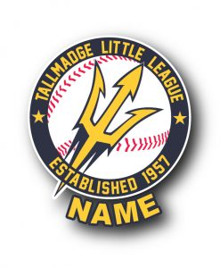 2019 Tallmadge Little League