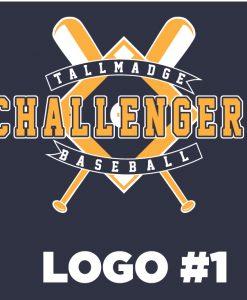 2019 Tallmadge Challenger Baseball