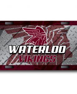 2019 Waterloo Vikings (Basketball and Wrestling)